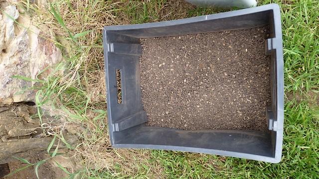Compost prêt au conditionnement